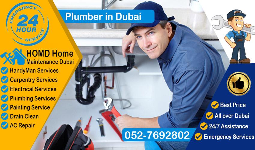 professional expert Dubai Plumber
