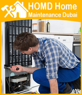 Fridge Repair Dubai